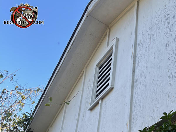 An wooden gable vent into the attic needs to be screened to keep roof rats out of the attic of a Columbus Georgia home.
