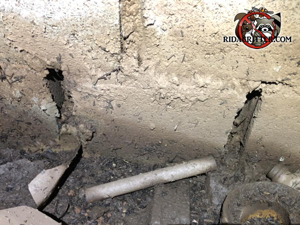 The mortar is missing between three cinder blocks and the rats got into the crawl space through the gaps