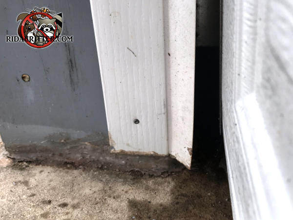 The garage door track shifted inwards and created a gap through which rats got into the garage