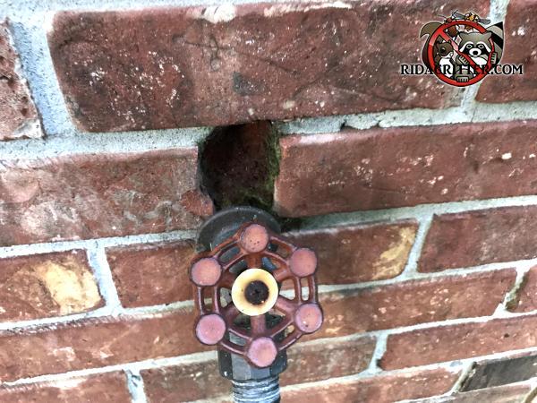 Gap around a garden hole spigot in a brick house in Calhoun Georgia through which rats got into the house