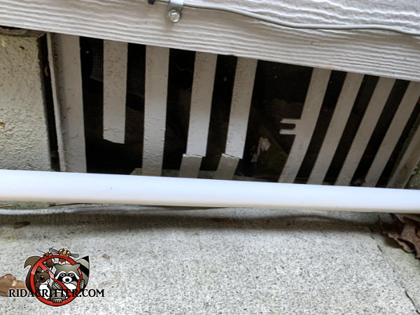Several slats of a flimsy plastic foundation cover have been broken and one is missing which allowed rats into the crawl space of a house in Atlanta.