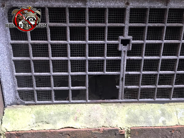 Rats got into a house in Atlanta through a missing section of lattice on an aluminum foundation vent