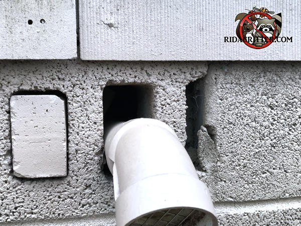 Someone passed a pipe through the bottom of a lightning hole in a sideways cinder block and rats got into the Bogart Georgia home through the gap over the pipe.