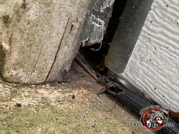 Rats gnawed through the lower left corner of a garage door that was off its track that will be repaired as part of a McDonough Georgia rat control job.