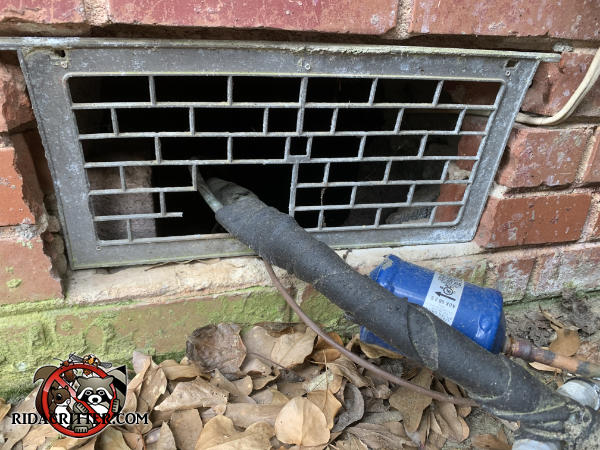 Three by four inches of the foundation vent lattice were removed to pass a pipe through and rats got into a Columbus Georgia home through the gap.