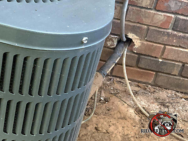 Gap around air conditioning pipes and wires where they pass through the wall allowed rats into a brick house in Smyrna Georgia