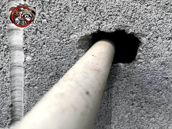 Space around a pipe going through a cement wall into a house in Cartersville Georgia