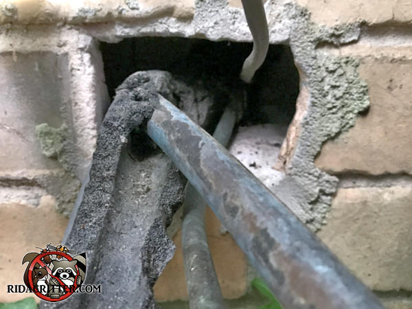 Rectangular gap in the bricks where pipes were passed through into the house also allowed rats to get in