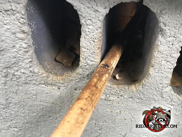 Norway rat rub marks on a pipe sticking out from a lightening hole in a cinder block in the foundation of a house in Atlanta