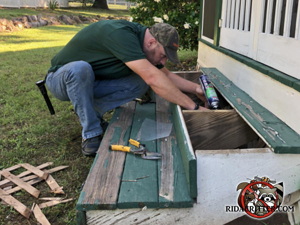 Man sealing rats out of a porch stair with the top step removed for access to the rat holes