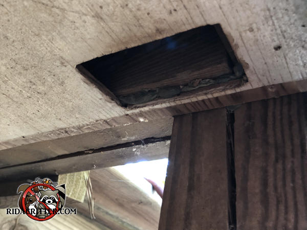 Soffit vent was removed to treat a rat infestation in the soffit of a house in Marietta Georgia