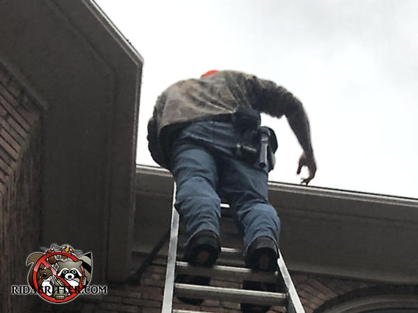 Man on a ladder sealing roof rats out of the attic of a house in Woodstock Georgia