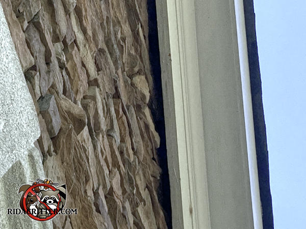 Gap between the roof frieze board and the stone walls of the house allowed rats into the attic of a house in Athens Georgia