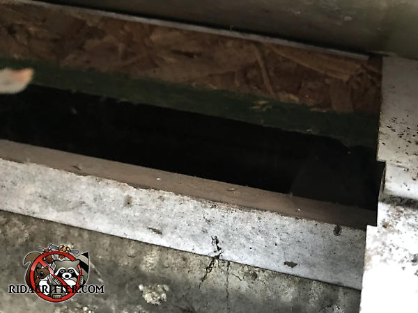 One inch gap between the roof sheathing and fascia through which roof rats got into a house in Athens Georgia
