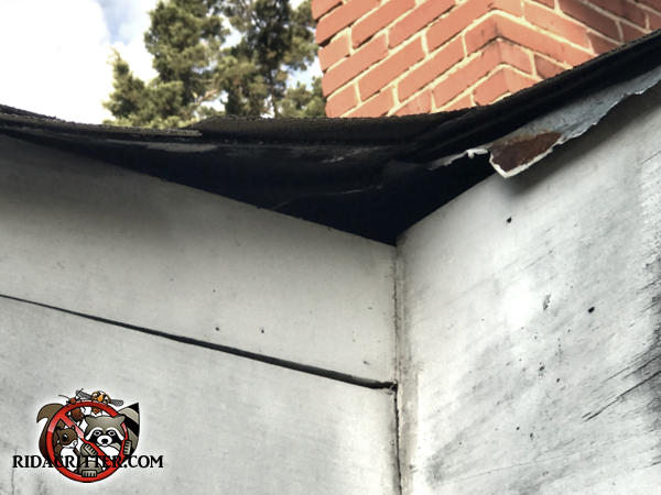 There is a two inch gap between the shingles and the top of the fascia board at a corner of the roof