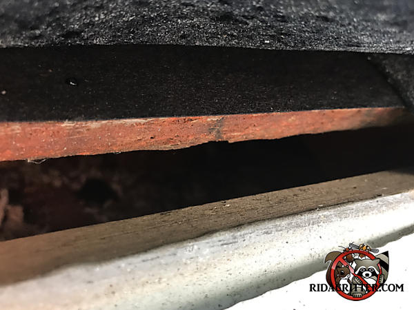 Inch or so gap between the roof sheathing and fascia that allowed rats into the attic of a house in Canton Georgia