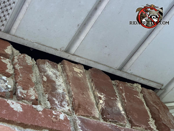 The vertical bricks near the soffit panel are jagged and created a gap that needs to be sealed to keep roof rats out of a Johns Creek Georgia home.