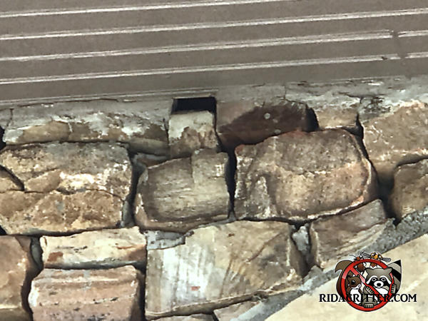 A stone right under the soffit of a stone house in Avondale Estates Georgia came loose and created a gap that roof rats used to get into the house