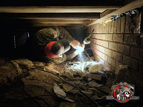 Man lying on the dirt floor of a crawl space in Hoover Alabama sealing Norway rats out of the crawl with an aerosol sealant