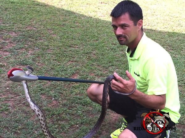 Snake Removal Macon Albany Valdosta Georgia