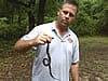 Snake control technician holding a snake in Marietta, Georgia