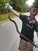 Young animal control technician Matt Darnell holding a large rat snake he removed from the crawl space of a house in Macon, Georgia.
