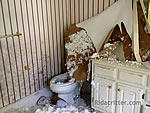 Severe damage to a bathroom after a failed DIY squirrel-removal attempt