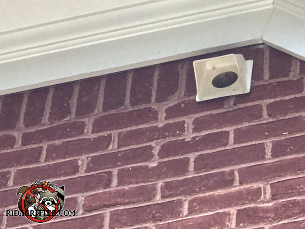 Missing flapper door on a clothes dryer vent mounted high on the brick wall of a house in Fayetteville Georgia allowed squirrels into the house.