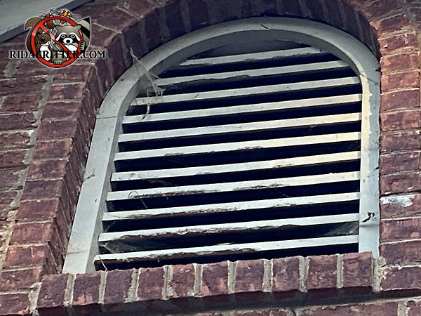 Squirrels gnawed at the wooden slats of a tablet shaped gable vent on a brick house in White Georgia.