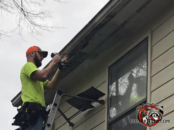 Man on a ladder using a cordless electric drill to repair squirrel damage to the soffit and rain gutter of a house in Atlanta.