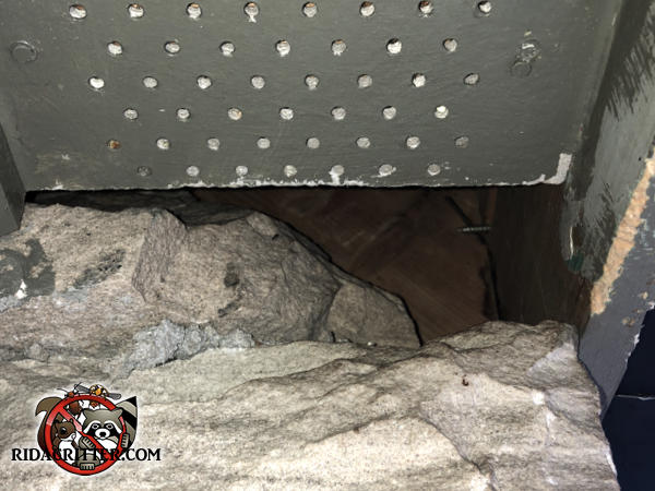 Large gap in a stone wall near the soffit allowed squirrels into the attic of a house in Dunwoody Georgia