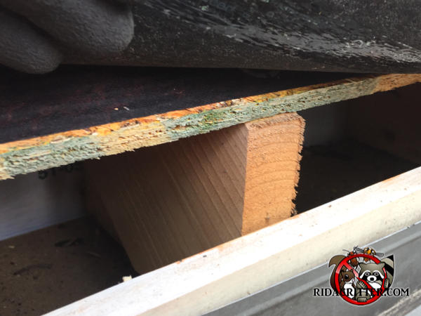 Gap of about three inches between the roof sheathing and the fascia allowed squirrels into a house in East Point Georgia