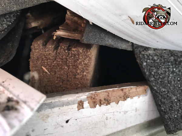 Gap of several inches in the roof sheathing at the corner of the roof of a house in Scottdale Georgia