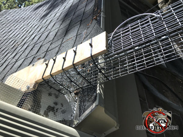 Squirrel box trap mounted with its end against the roof fascia of a house in Atlanta and alternate exits sealed off with hardware cloth to force squirrels into the trap.