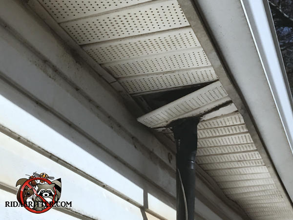 A section of soffit panel around a vertical pipe is sagging on one end which allowed squirrels to climb into the soffit of a Columbus Georgia home.