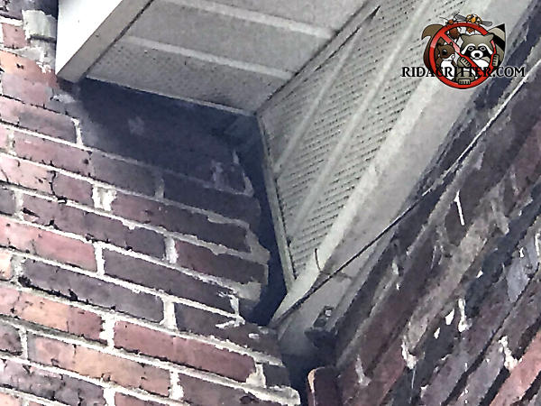 Separation of bricks at a corner of the house exposed gaps that allowed squirrels into a house in Atlanta