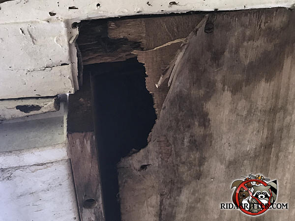 Squirrel hole about two by three inches in the corner of a plywood soffit panel at a house in Dallas Georgia