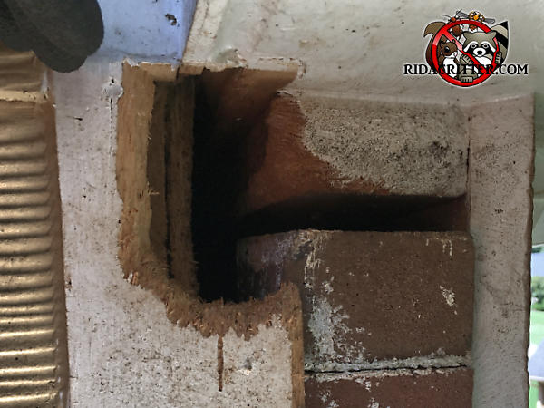 Squirrel entry hole chewed through the wooden trim of a brick house in Atlanta