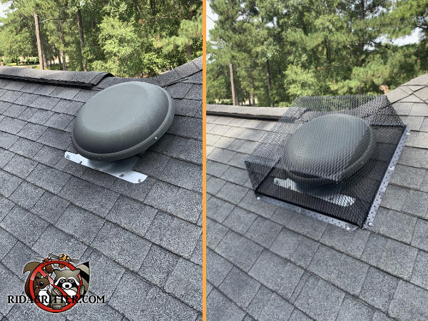 A vent on the roof of a house in Griffin Georgia before and after it was covered with a metal cage to keep squirrels out of the attic