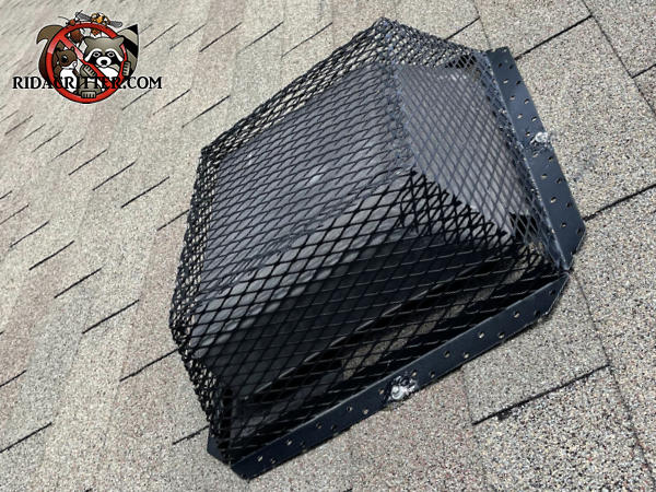 Sturdy metal mesh roof vent installed on the roof of a house in Flovilla Georgia to keep squirrels out of the attic.