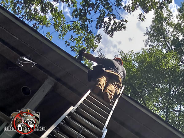 Man on a ladder with trees and the sky in the background using power tools to keep squirrels out of the attic of an apartment building in Atlanta