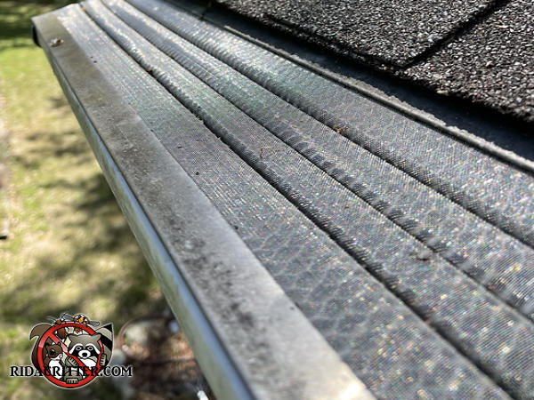 Heavy duty metal rain gutter covers being used to keep squirrels out of the attic of a house in Milledgeville Georgia.