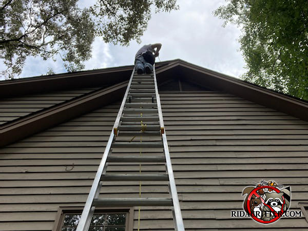 Man on top of a tall ladder performing squirrel removal and exclusion at a Tuscaloosa Alabama home.
