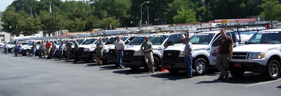 A long line of animal control technicians standing in front their trucks